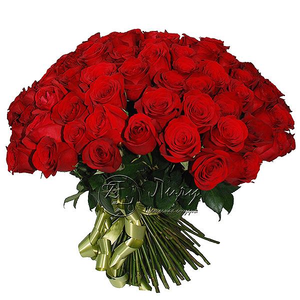 Роза (не композиции)